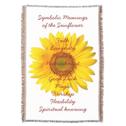 THE MEANING & SYMBOLISM OF sunflowers | Fair trade gift ...