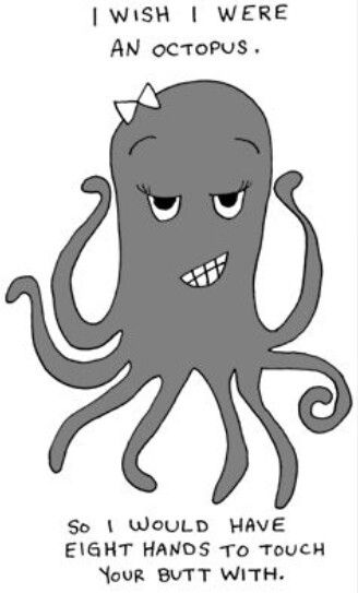 Ostopus