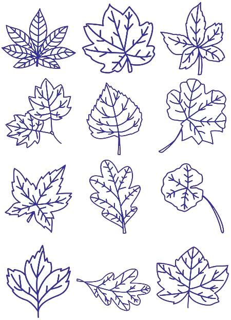 Free Machine Embroidery Designs 12 Embroidery Designs To Download