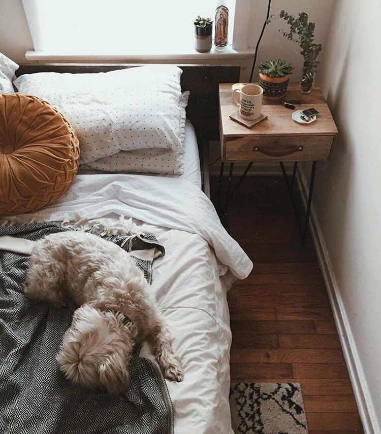 Urban Outfitters Bedroom Ideas Master Bedroom Accent Wall Ideas Master Bedroom Armoire Teenage Bedroom Colour: Pinterest: Nuggwifee☽ ˜�☾