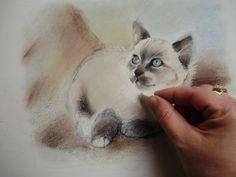 Pas A Pas Rapide D Un Chat Pastels Tendres Peinture Venise