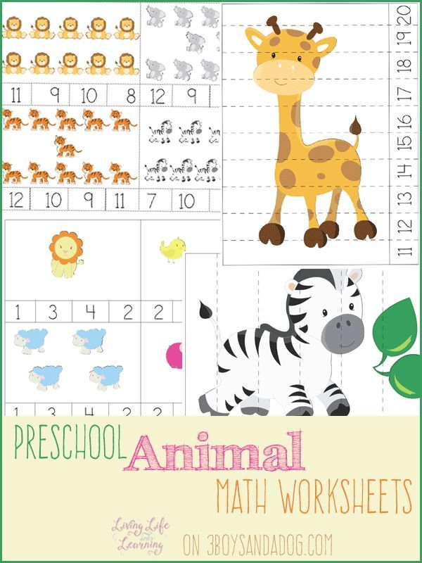 Animal Preschool Math Worksheets | Math worksheets, Worksheets and Math