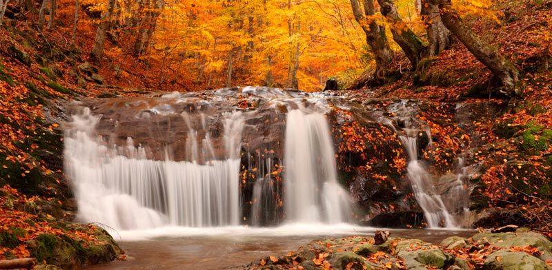 Paisajes bonitos de otoño   paisajes de otoño   Pinterest