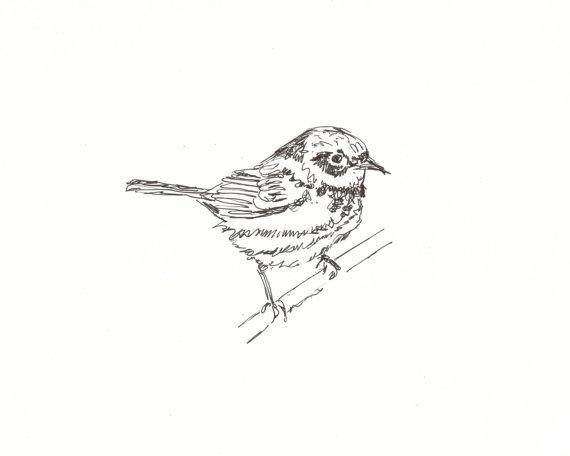 Yellow Warbler Original Pen & Ink Bird door raccooncatcreations