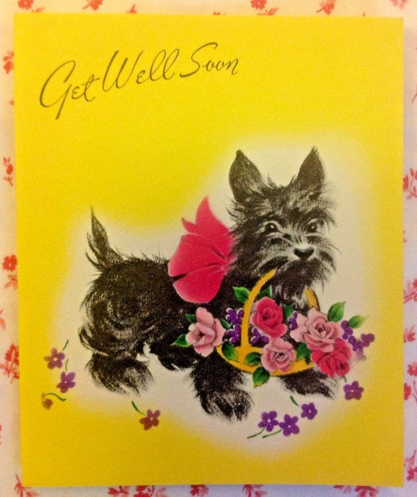 Vintage 1950 S Greeting Card With Cute Scottie Dog Scottish Terrier