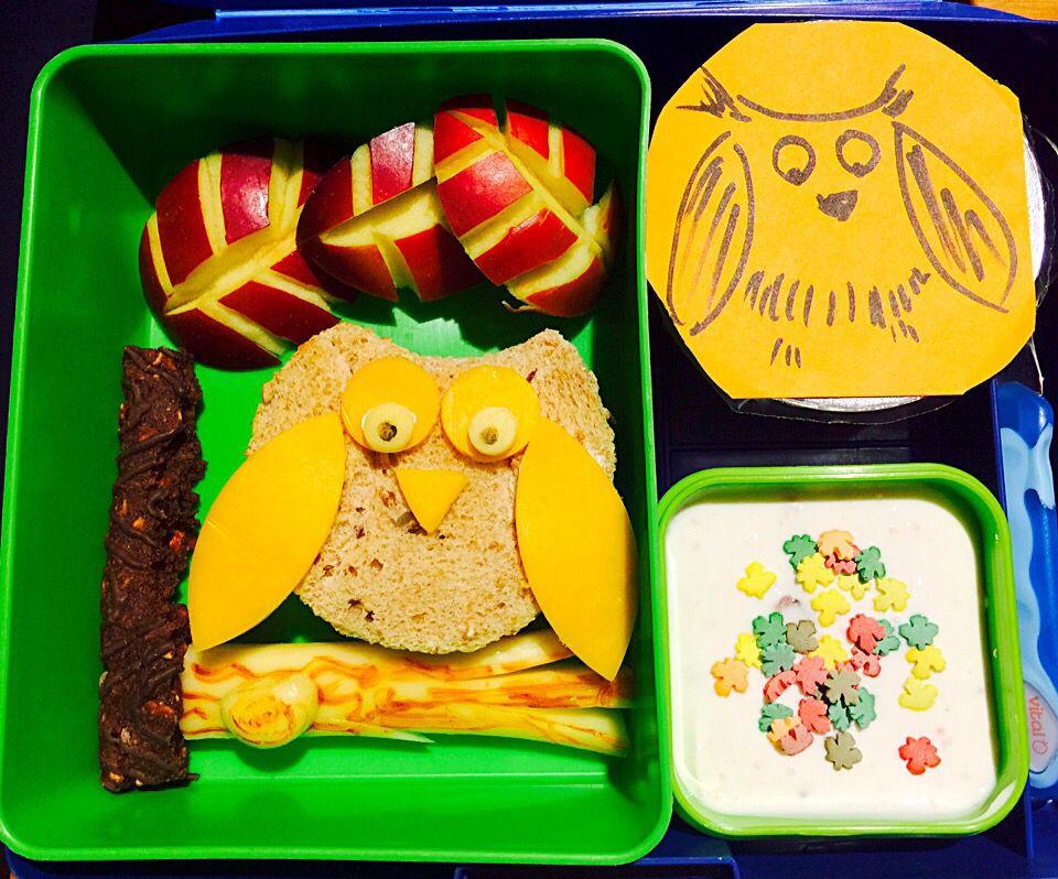 Owl Bento and Snacks