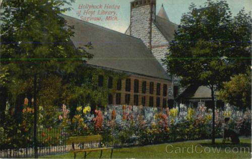 Saginaw Mi Hollyhock Hedge Hoyt Library Michigan John E Ferris Postcard Vintage Ebay In 2020 Saginaw Vintage Postcards Hollyhock