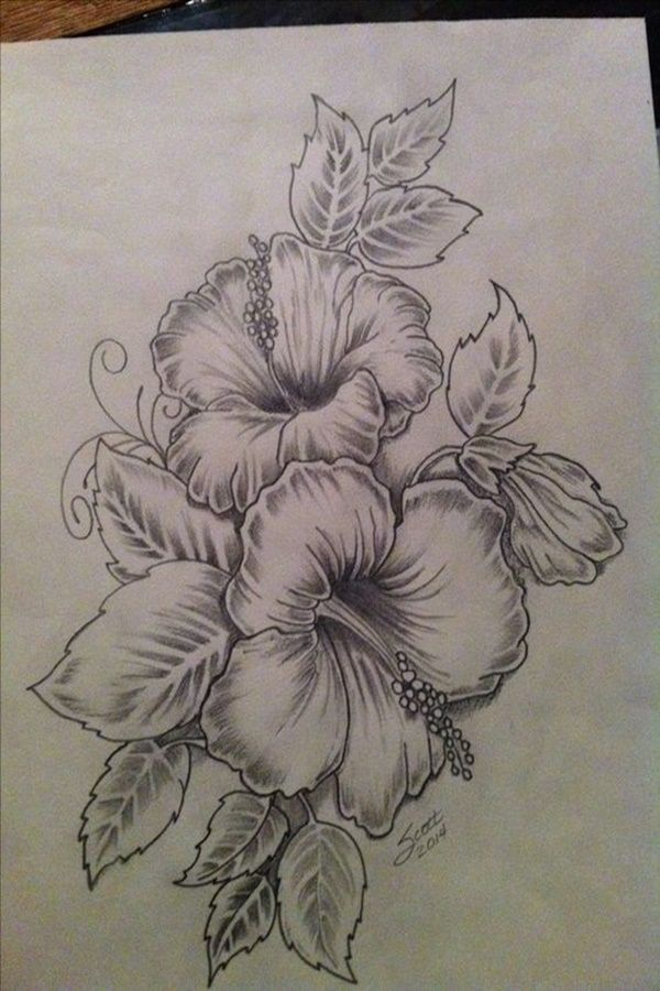 Easy Flower Pencil Drawings For Inspiration In 2020 Hibiscus