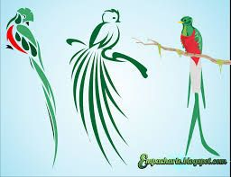 Quetzal Birds Pictures Quetzal Bird Coloring Page Pictures
