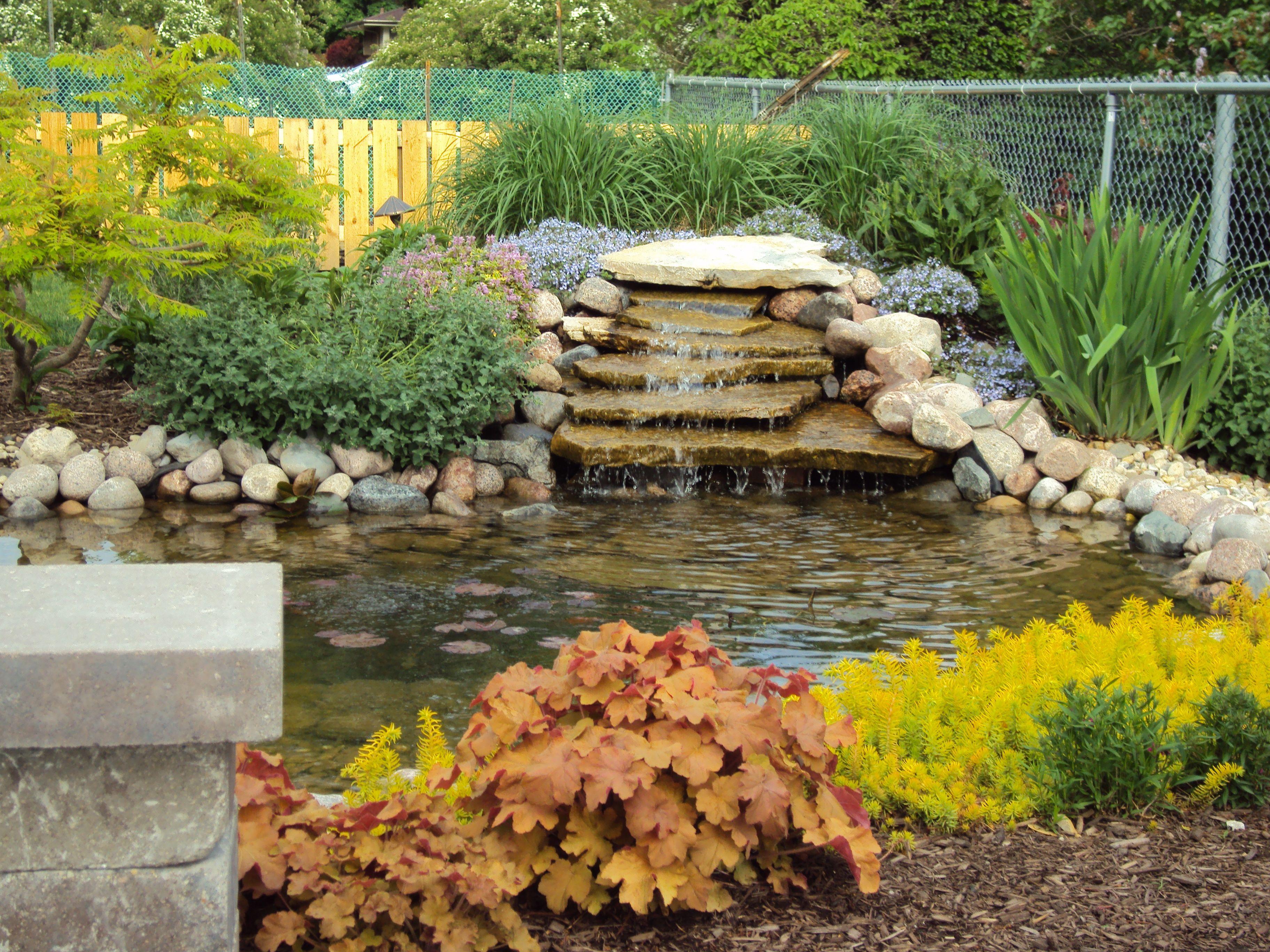 Backyard Ponds | Tips For Building A Backyard Pond
