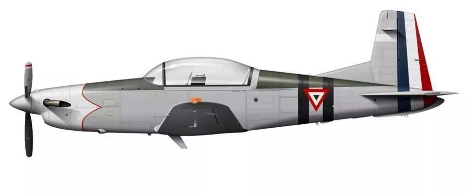 Mexican Air Force Escuadrón Aéreo 201 | Fuerza Aérea Mexicana ...