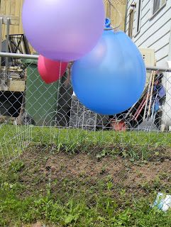 JADA ROO AND DYSLEXIA TOO: Balloon Sprinkler/ Pinata