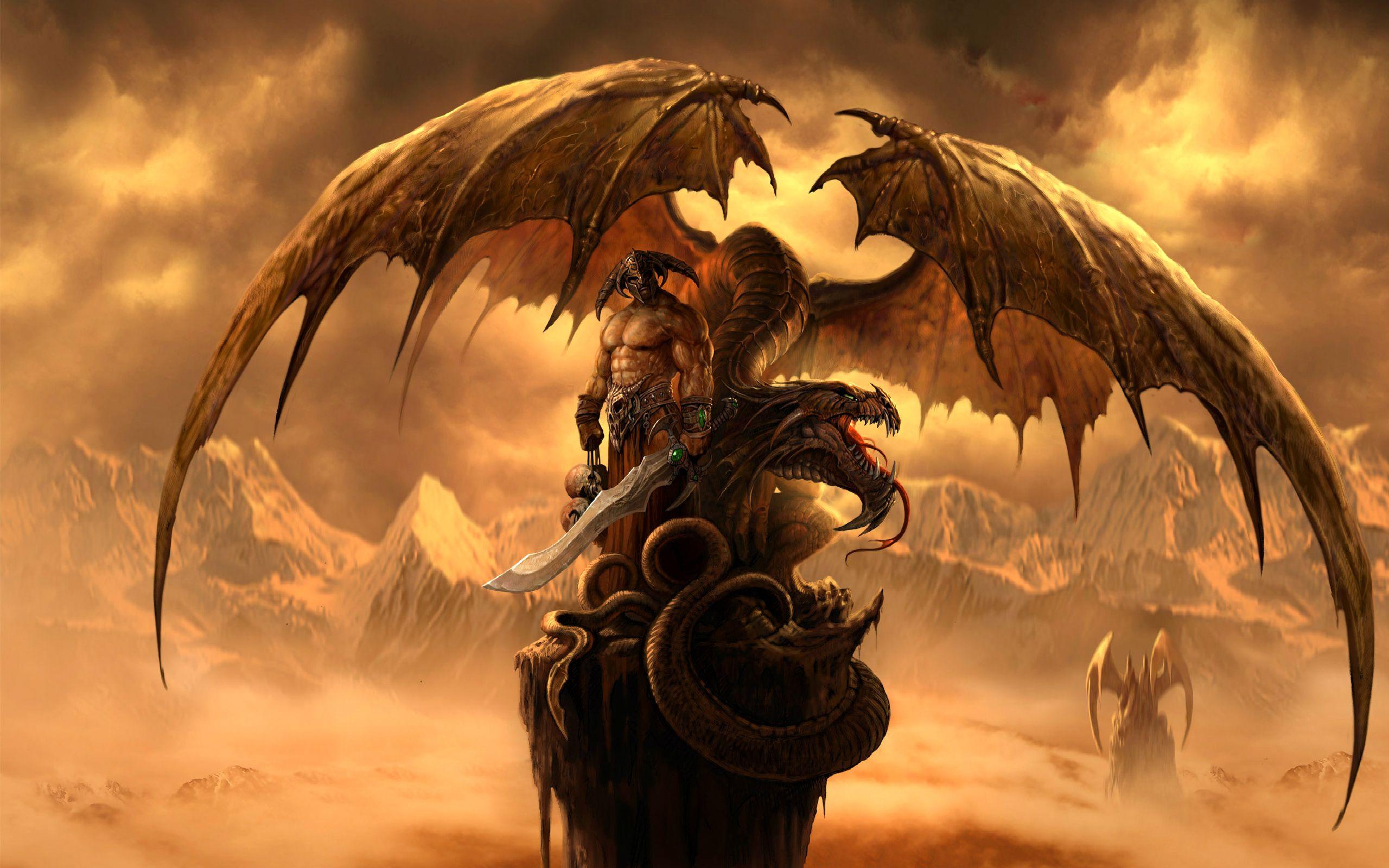 To Each His Own Fonds D Ecran Arrieres Plan 2560x1600 Id 137464 Dragon Fantastique Guerrier Dragon Images De Dragons