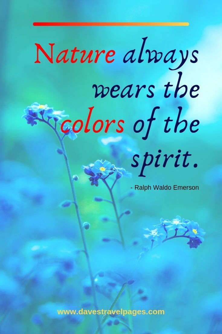 Best Nature Quotes - Inspirational sayings and quotes about nature
