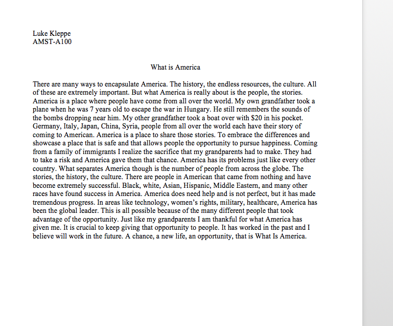 What Is America Essay  Kleppedigital Portfolio  Pinterest What Is America Essay