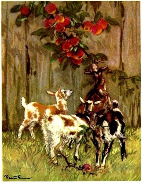 конечно коза с козлятами веретенникова картинки любит