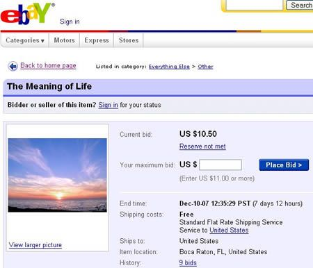 Would You Buy The Meaning Of Life On Ebay I Don T Know If I Would