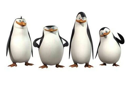 Madagascar Penguins D Penguins Of Madagascar Penguins Madagascar Movie
