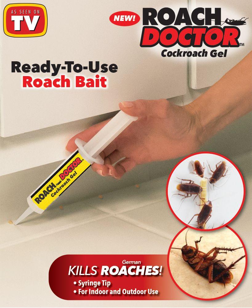 Pin On Creepy Crawlers And Bugs