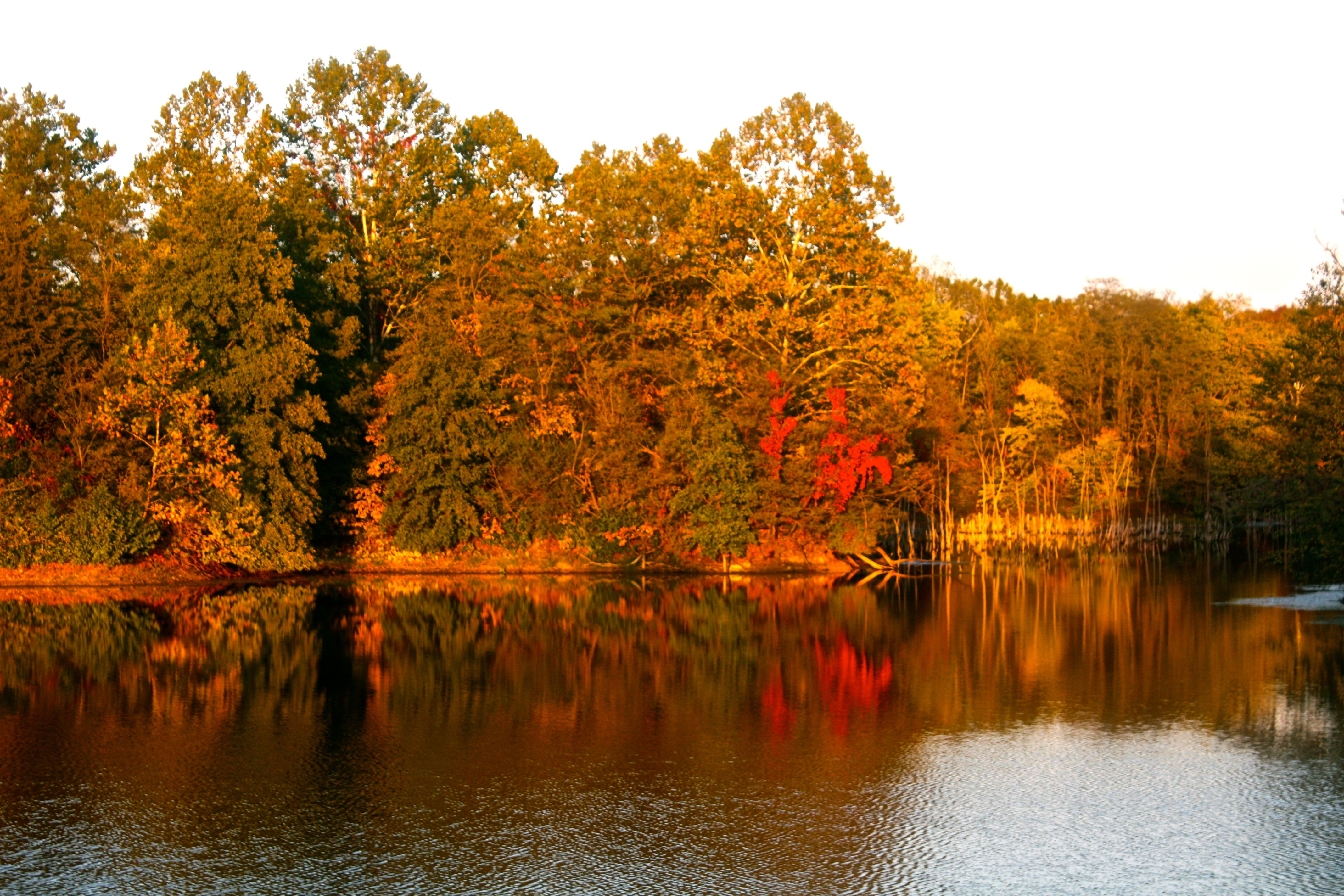 Beautiful Autumn view of Finger Lakes Park outside of