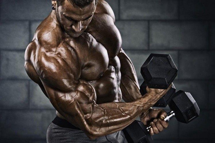 Wie Anabole Steroide Helfen Konnen Physique Zu Entwickeln