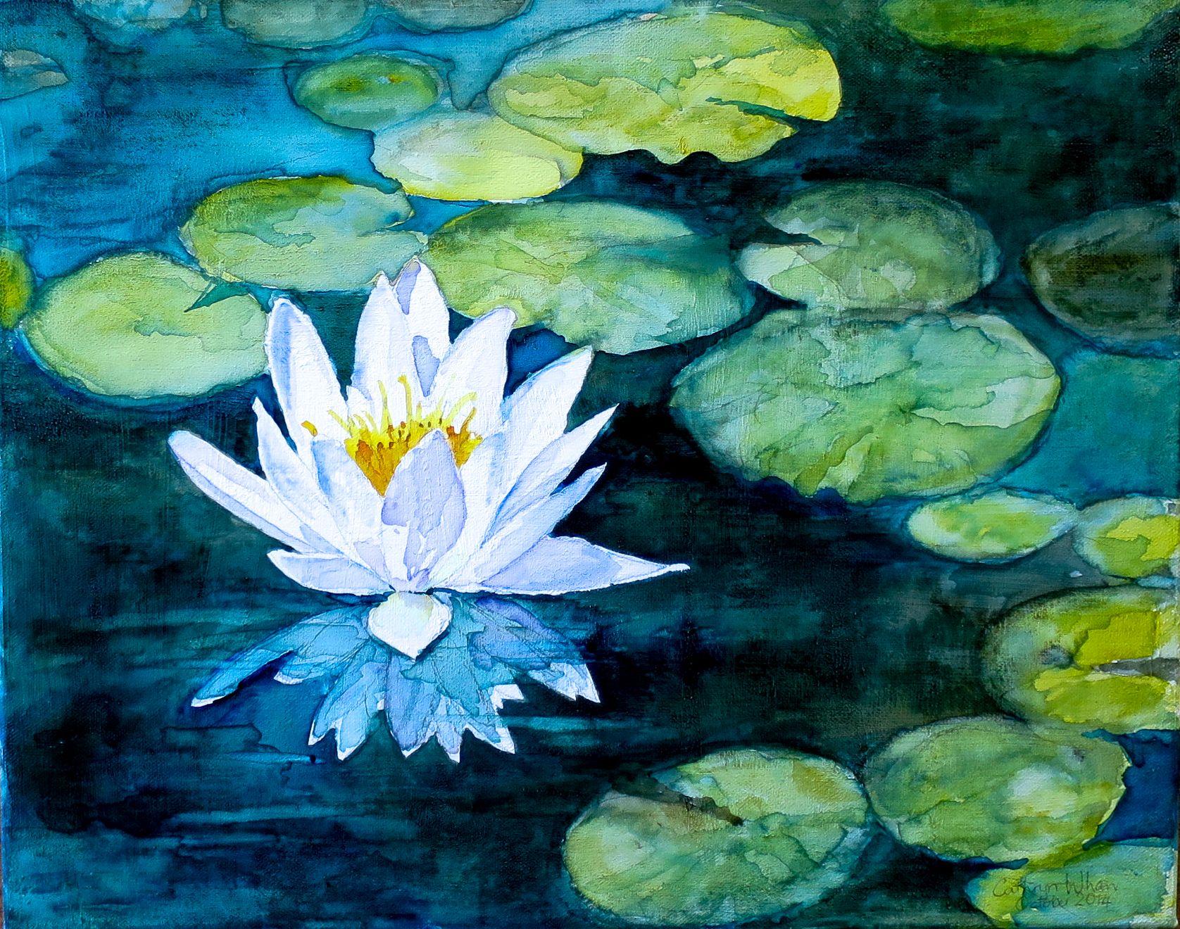 """White Water Lily Cathryn Whan ʈɦҽ ƥꭷɲɖ Ï»¸ Ï»¸ Á˜¡â""""""""vᘠ Áƒ¦ Ž¡ Su Jul 09 2 Water Lilies Painting Water Lilies Art Lily Painting"""