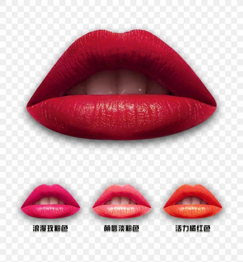 Lips Lipstick Lip Gloss Euclidean Vector Png Lip Beauty Cosmetics Lip Gloss Lip Liner Source By Favpng Beauty Cosmetics Euclidean Glo Gloss Lip