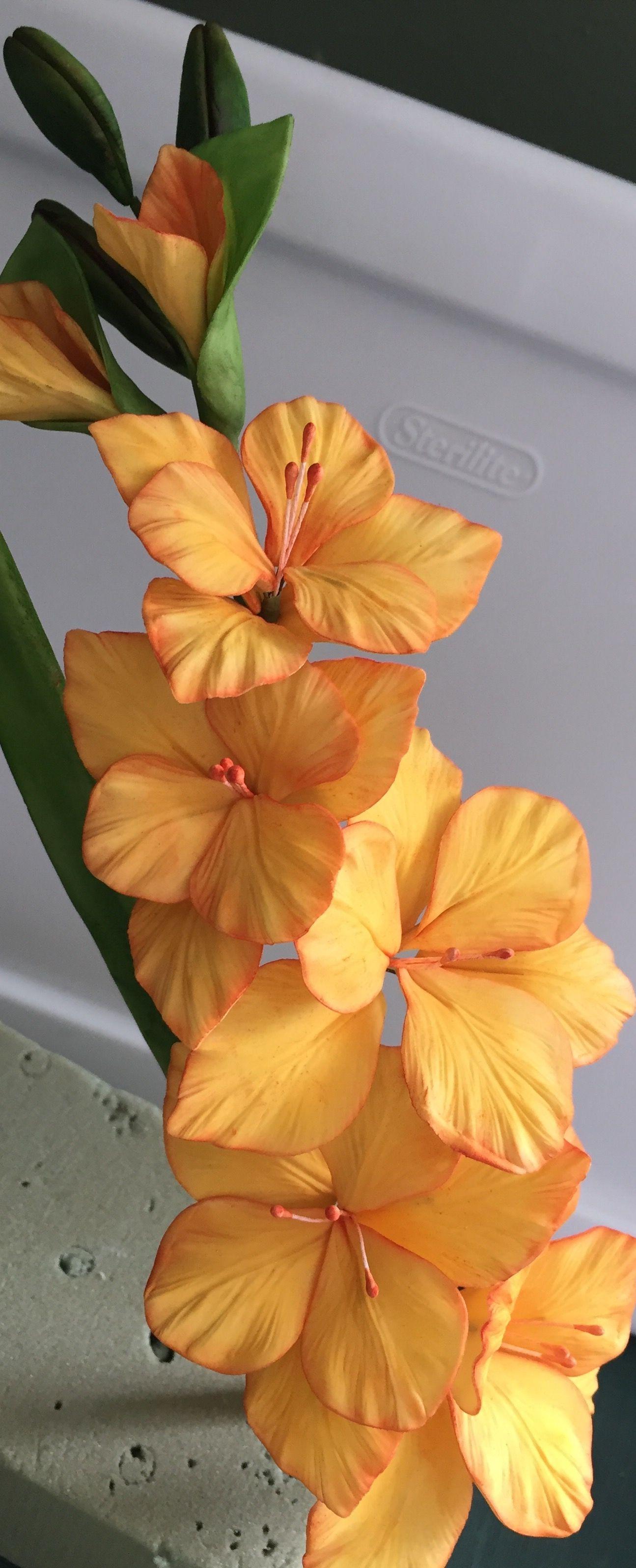 Gumpaste gladiolus cake decorating and gumpaste flowers gumpaste gladiolus izmirmasajfo