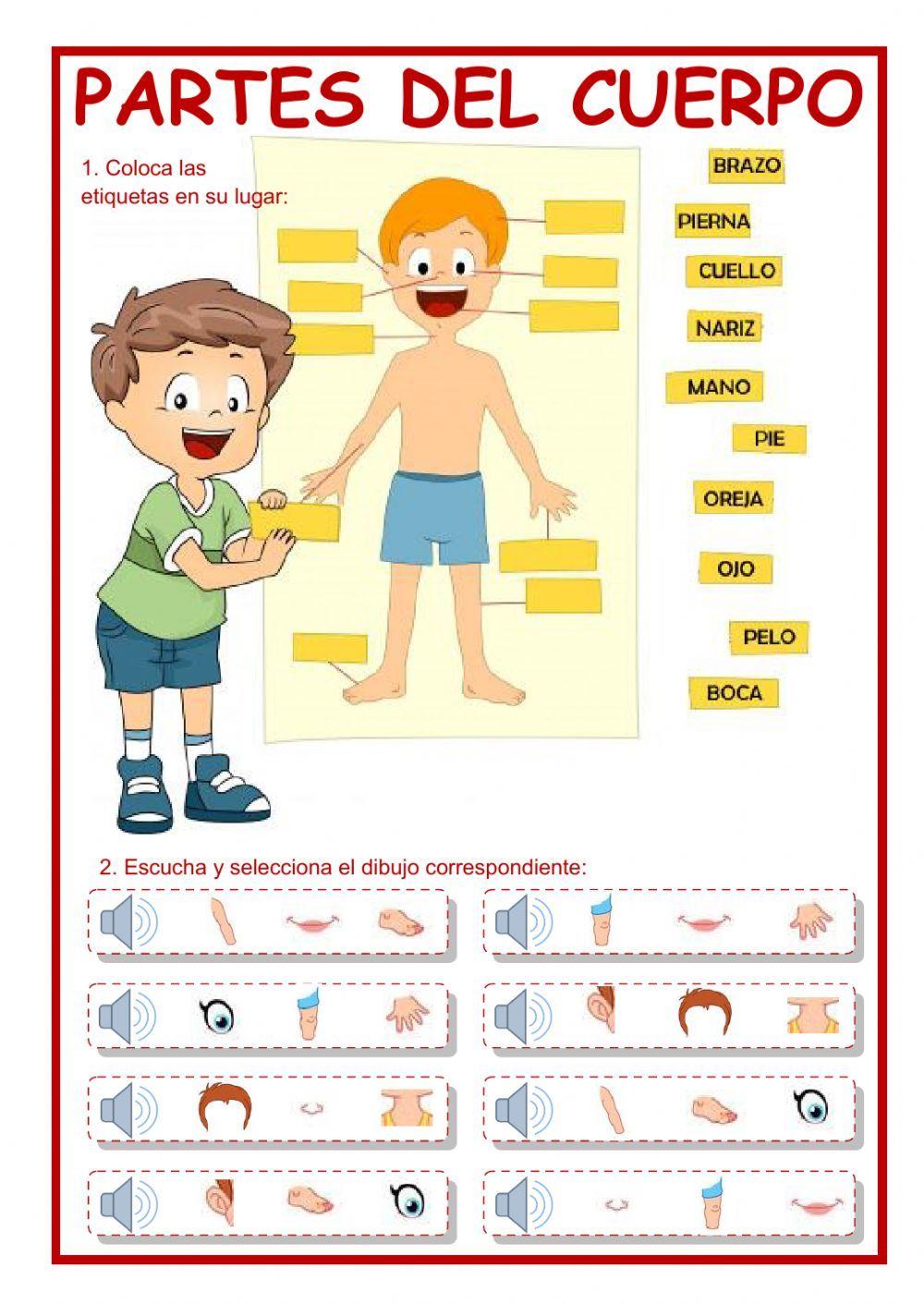 Pin On Spanish Teaching