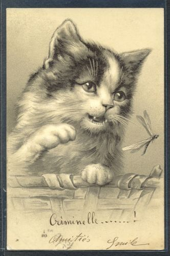 PW079-CHAT-Chaton-LIBELLULE-DRAGONFLY-CAT-KATZE-CPA-FANTAISIE-Gaufree-Embossed