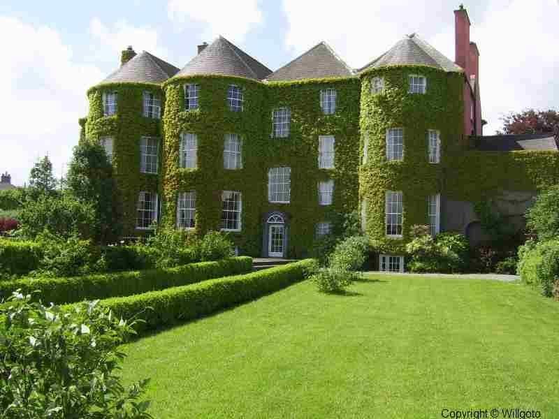 Ireland castles - Now how many years did it take that vine to grow that big :-)