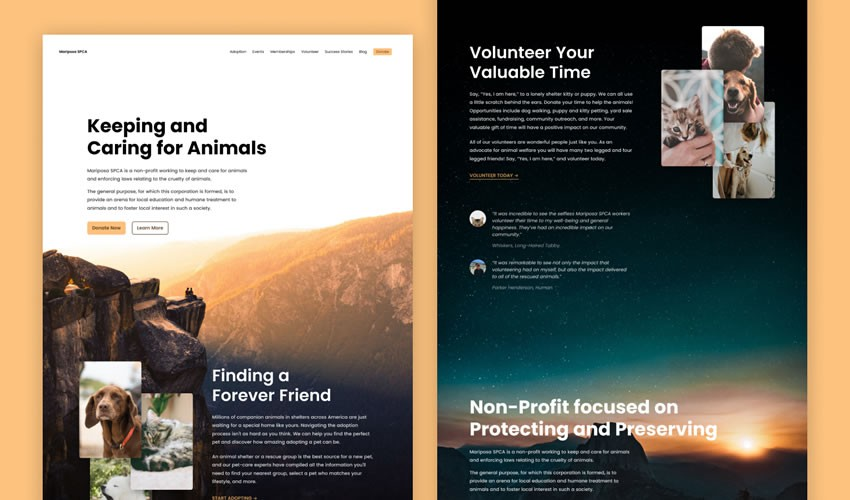 15 Non Profit Charity Websites For Web Design Inspiration In 2020 Web Design Inspiration Charity Websites Clean Web Design