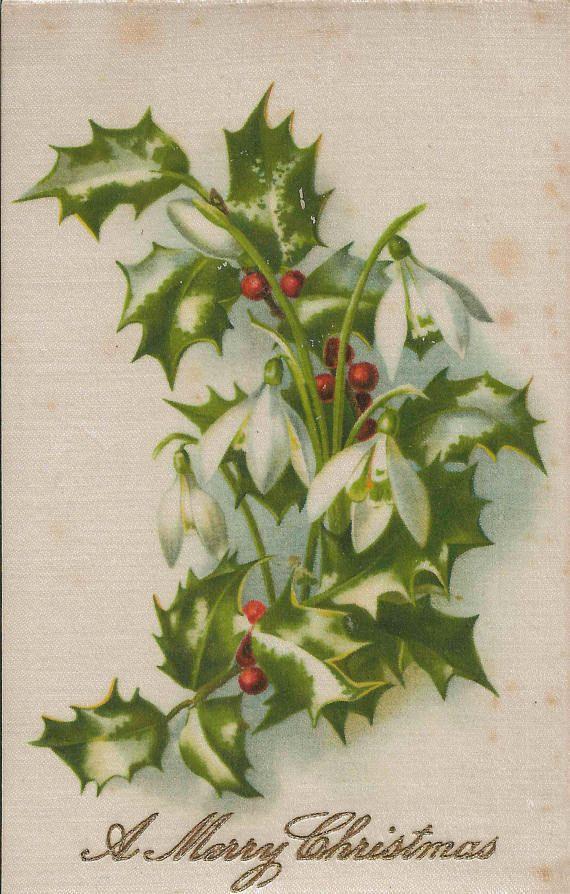 Rare Satin Antique 1900\'s A Merry Christmas Postcard Featuring Card ...