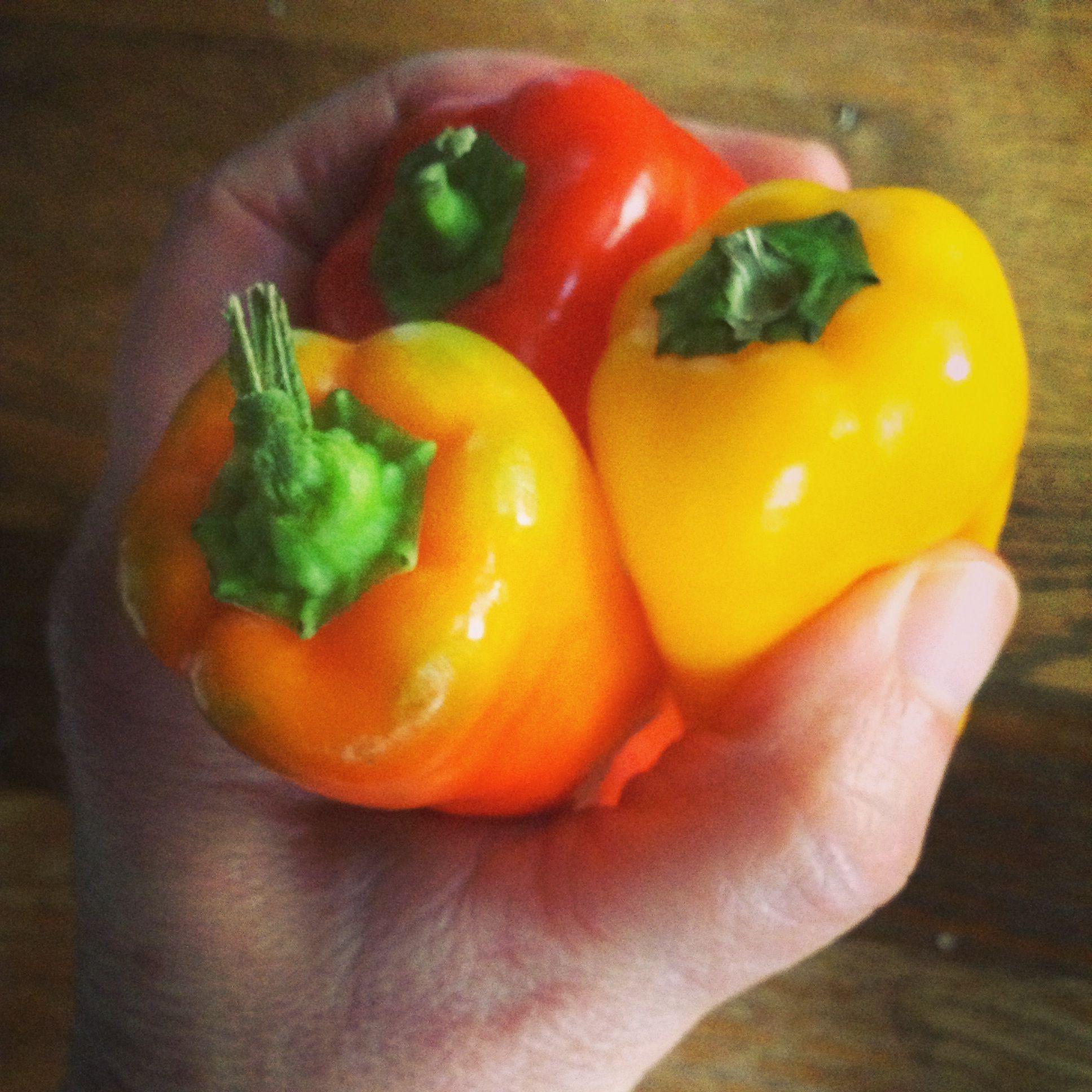 glow food sweet peppers