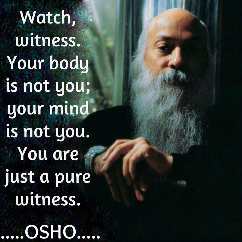 Observe, testemunhe. Seu corpo não é você; sua mente não é você. Você é apenas um observador.