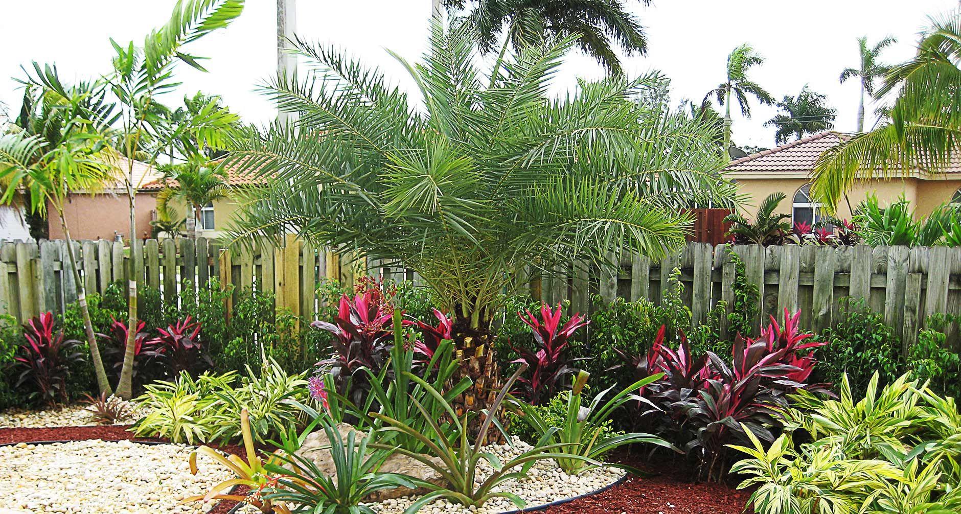 florida landscapes silvera landscaping