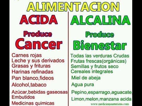 Alcalina pdf recetas de comida
