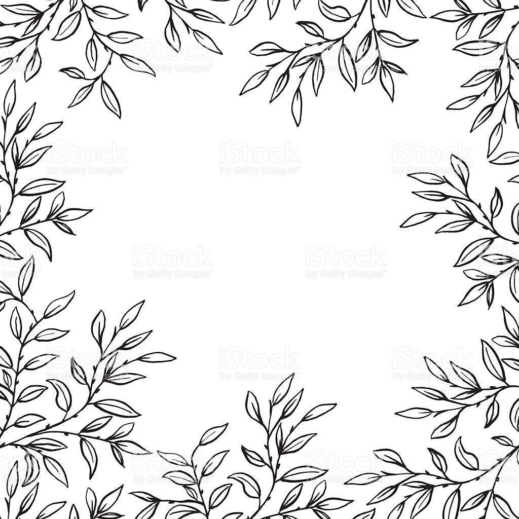 Image Result For Vine Sketch Invitation Card Vine Drawing Leaf Drawing Hand Drawn Flowers