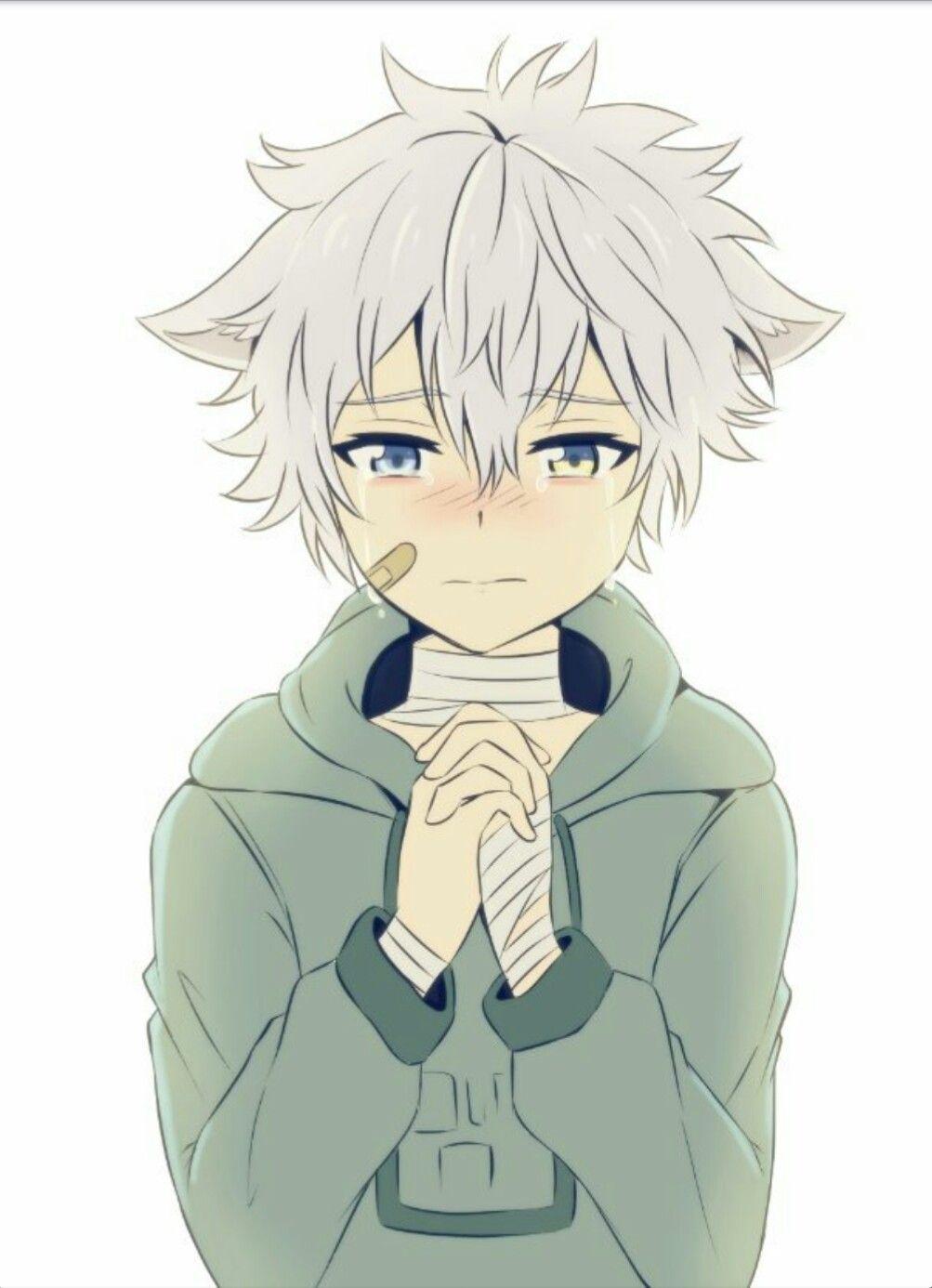 Wolf Cute Anime Kid Boy Novocom Top