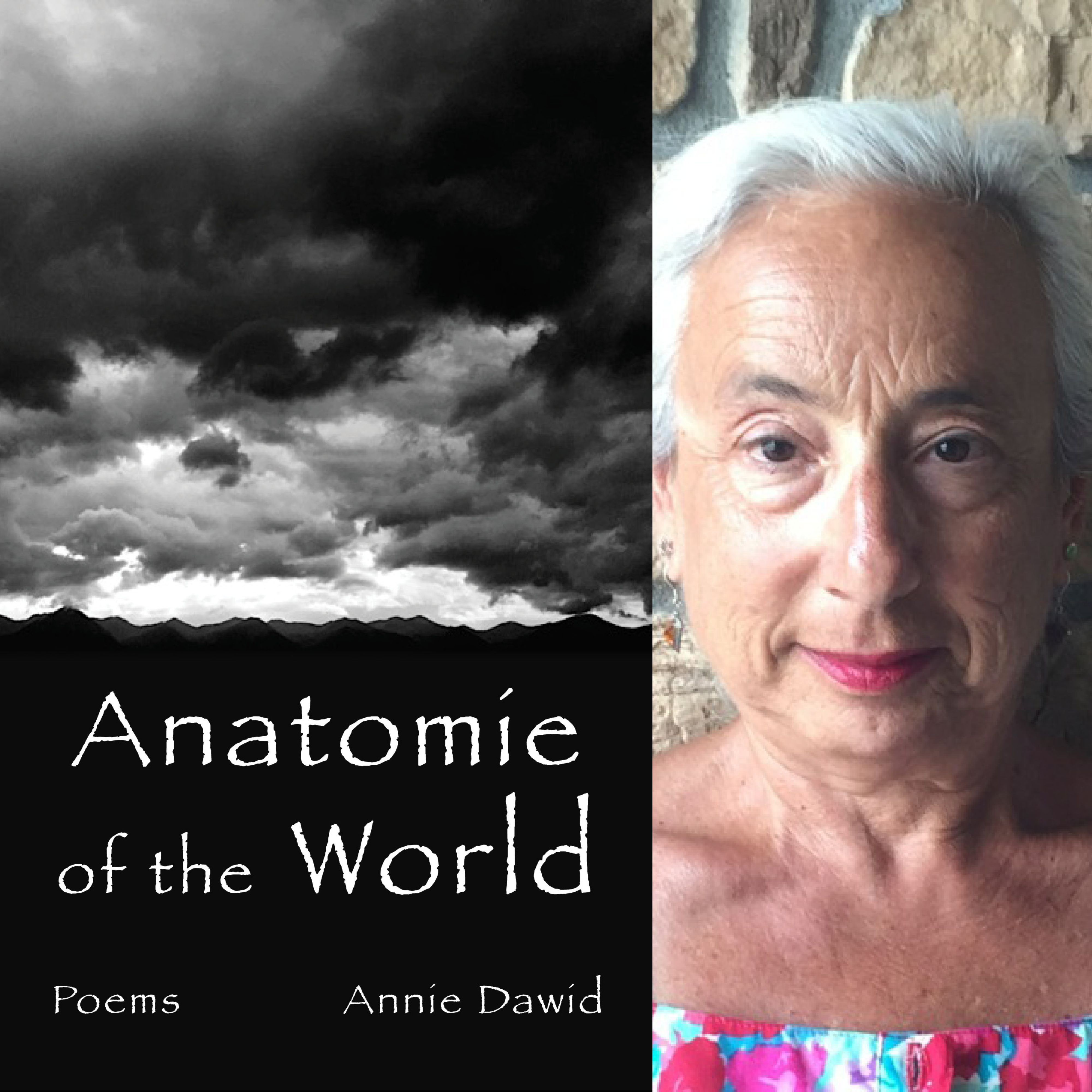 FINISHING LINE PRESS BOOK OF THE DAY: Anatomie of the World by Annie Dawid  $13.99, paper  RESERVE YOUR COPY TODAY  PREORDER PURCHASE SHIPS FEB. 24, 2017  https://www.finishinglinepress.com/product/anatomie-of-the-world-by-annie-dawid/