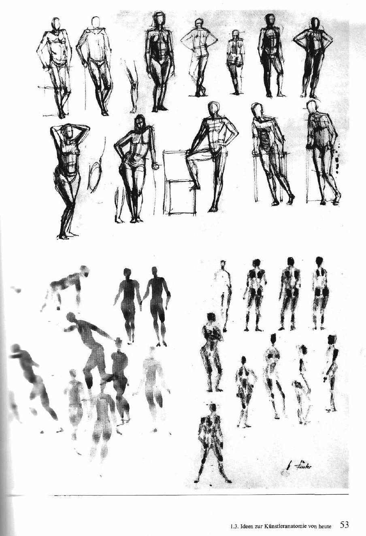 Gottfried Bammes Der Nackte Mensch | •Bammes anatomy • | Pinterest