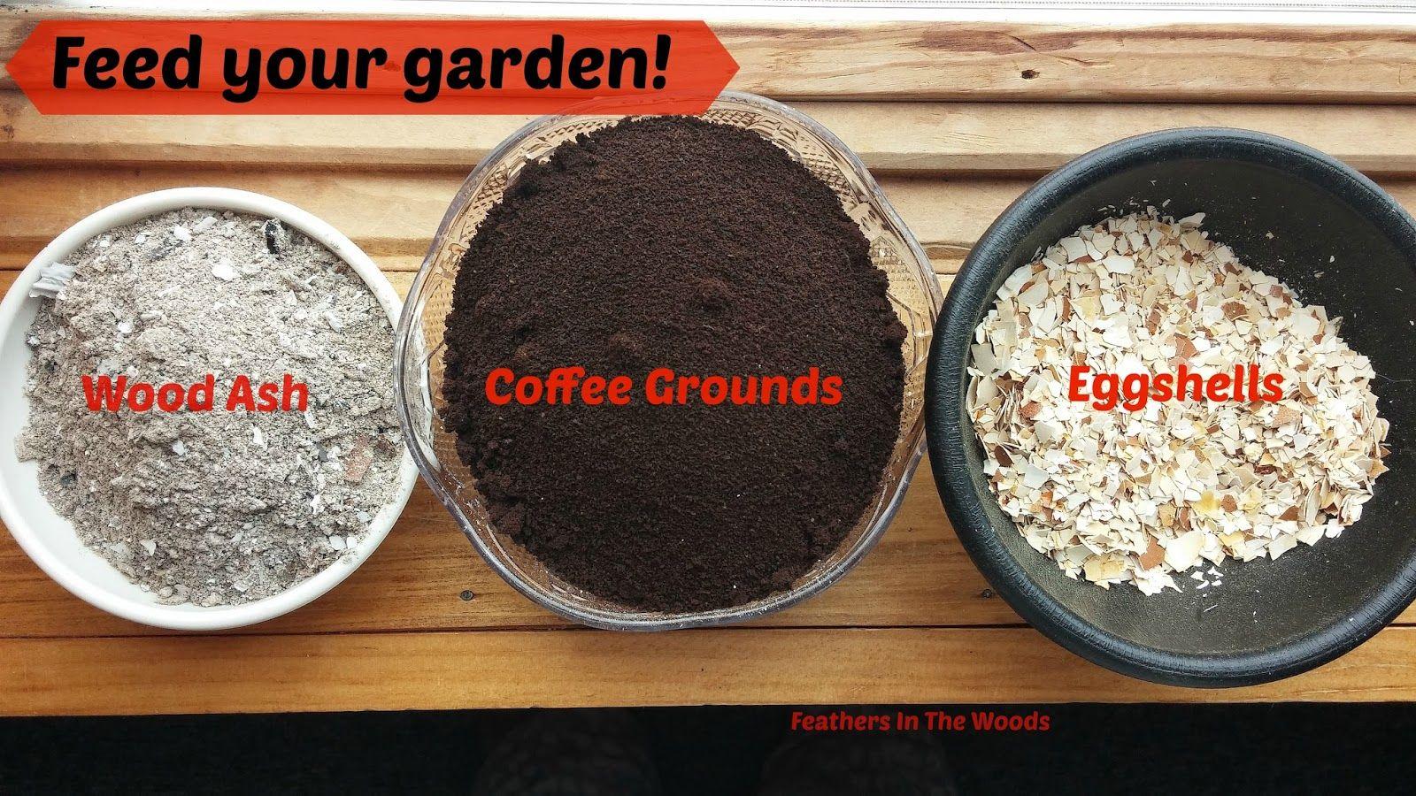 Feed Your Garden Coffee Grounds Eggshells Wood Ash Coffee Grounds Organic Vegetables Egg Shells