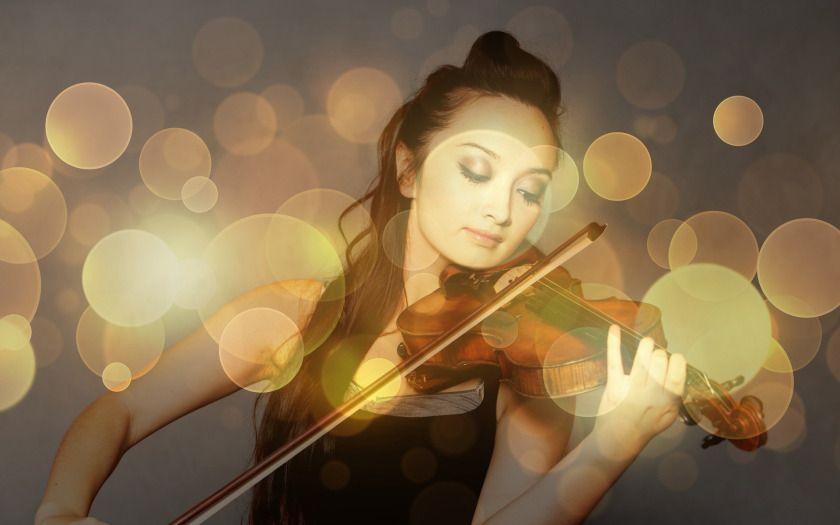 Fine arts learn music violin learn violin