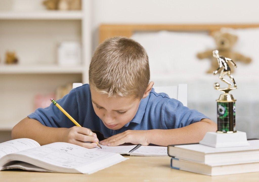 home work scriere