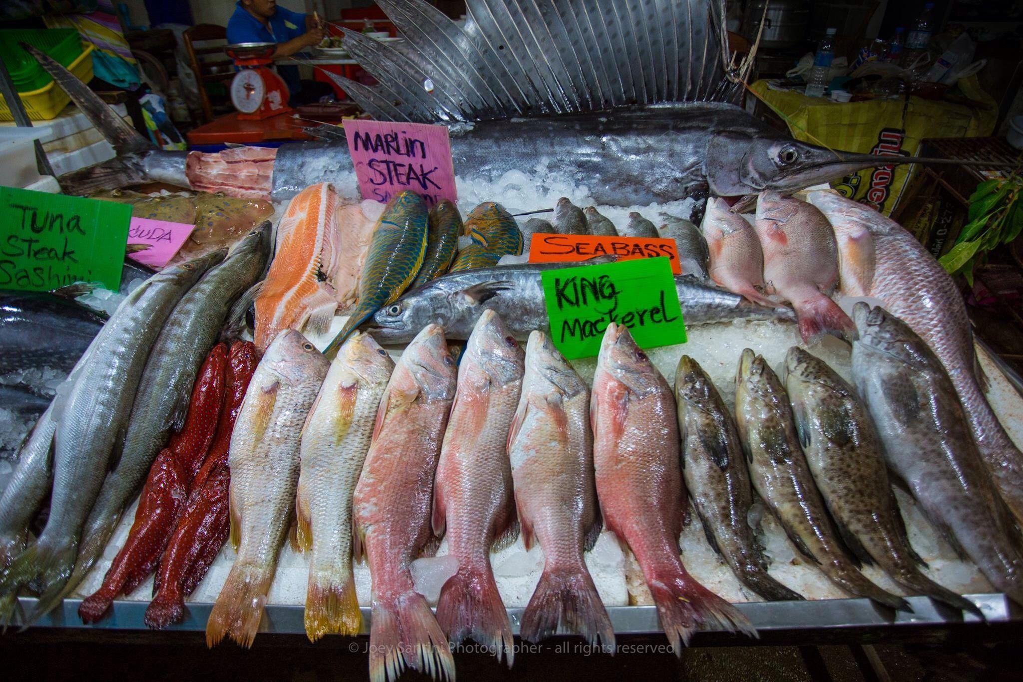 Fisk av alla sorter