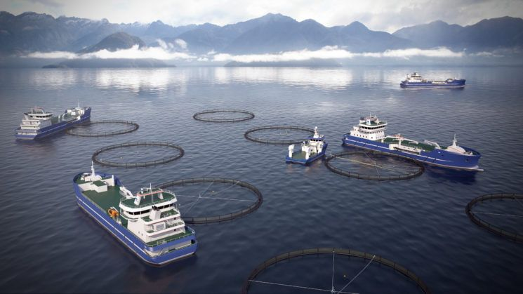 Salt Ship Design are now designing new living fish freighters (salmon) for Dess Aquaculture Shipping - 2 ships are ordered, 2 in option.  Haugalandet Sunnhordland - Maritimt Forum