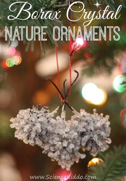 Make borax crystal nature ornaments to complete your holiday decorating.  The crystals look like frosty icicles and make the ornaments shimmer in the  light. - Borax Crystal Nature Ornaments The Science Kiddo Blog Ornaments