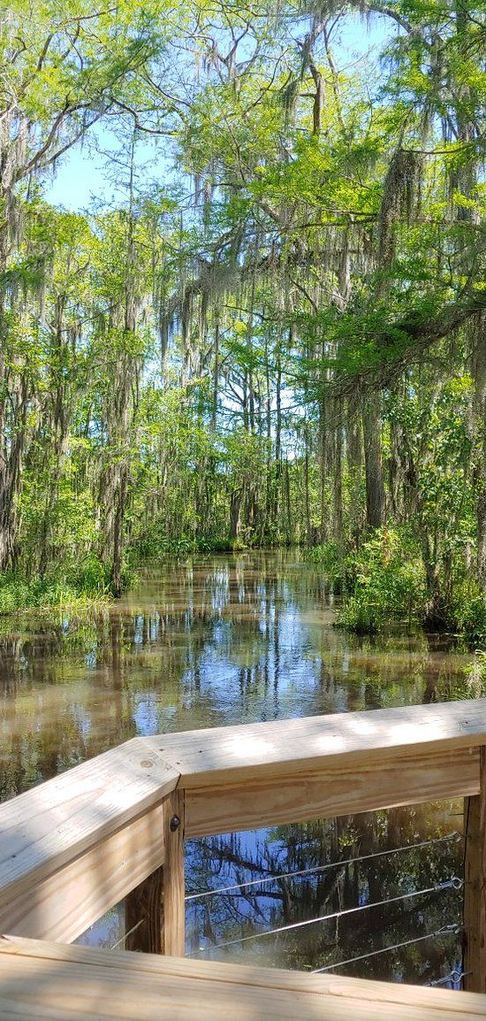 Cajun Encounters Tour (New Orleans) 2019 All You Need to