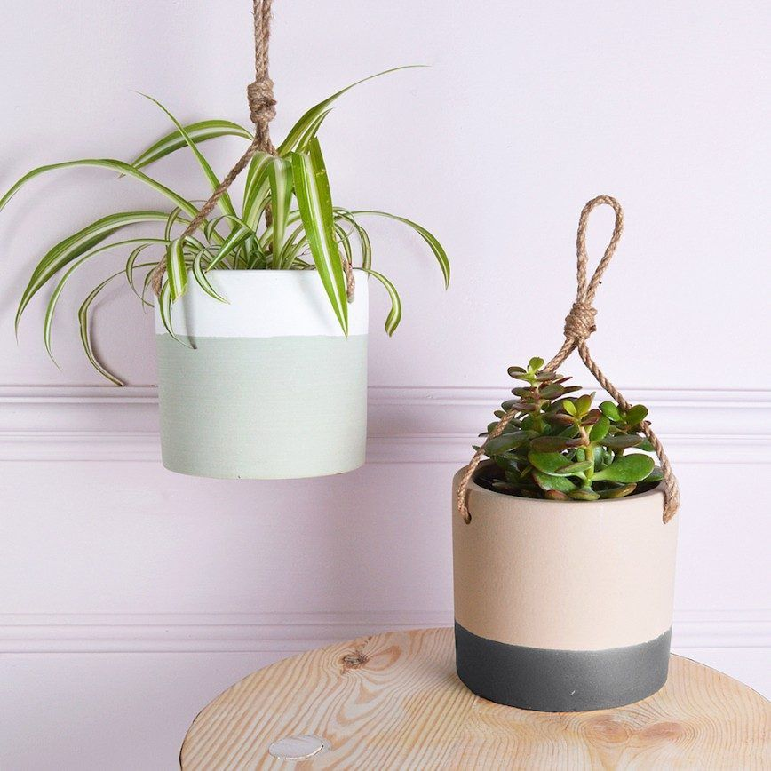 Five home decor trends to try in 2017 hanging plants