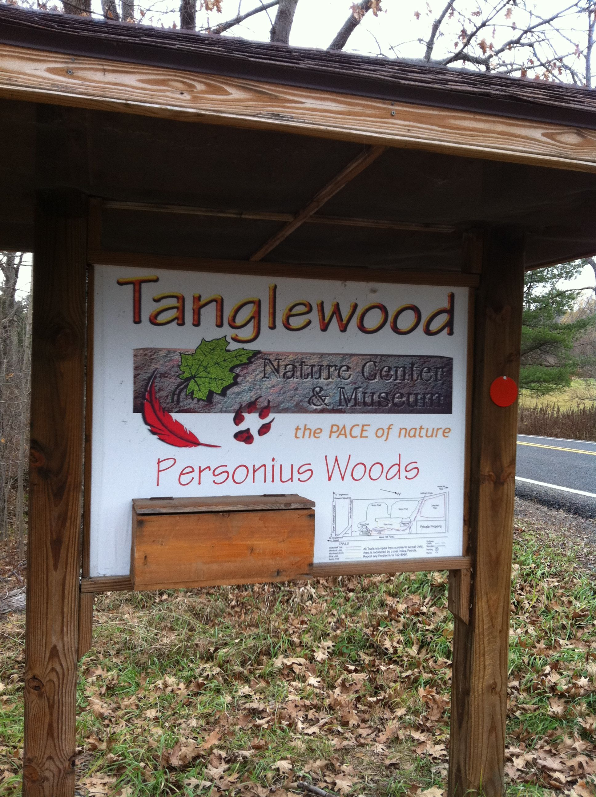 Personius Woods In Elmira Ny Is The Dog Walking Area Of The
